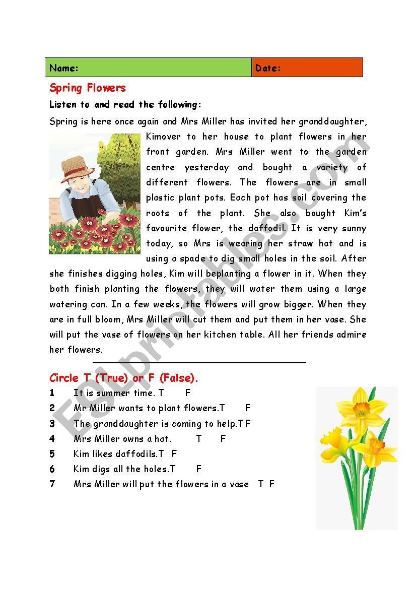 Spring Flowers worksheet
