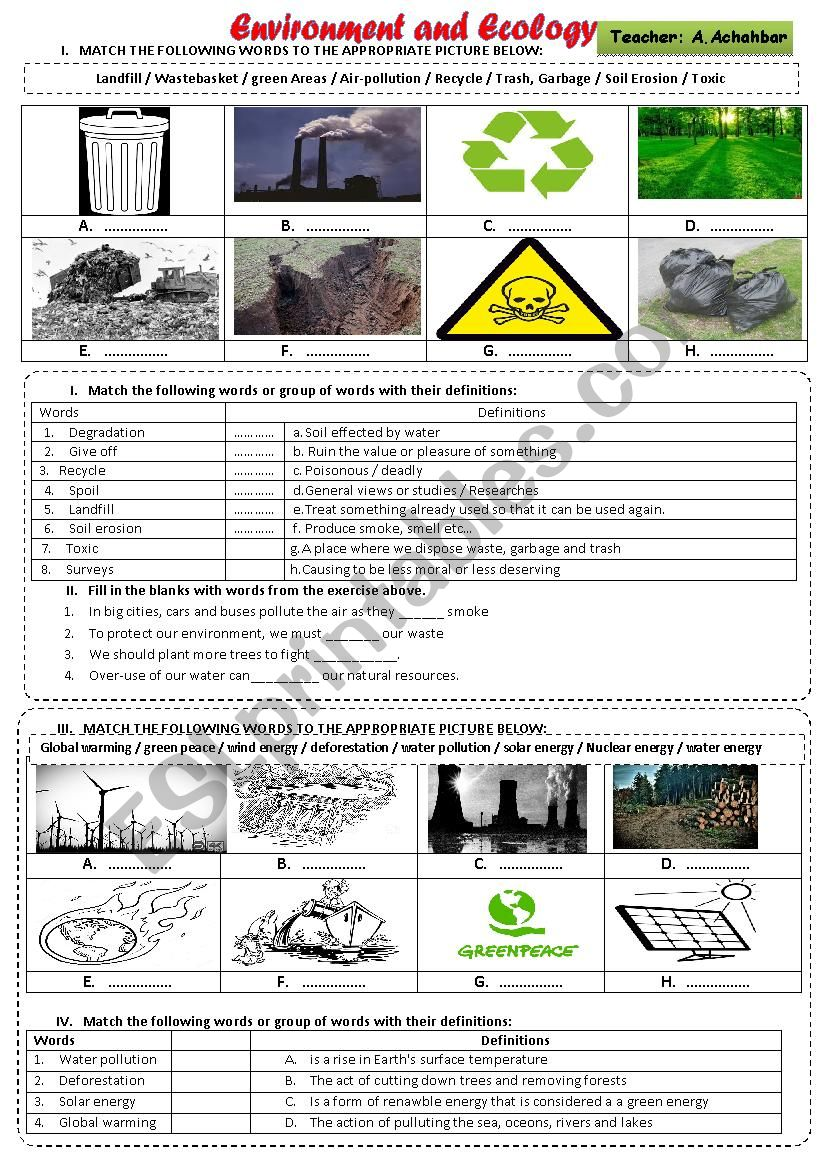Environment and Ecology worksheet