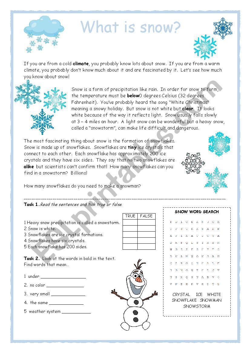 Snow Reader Activity worksheet