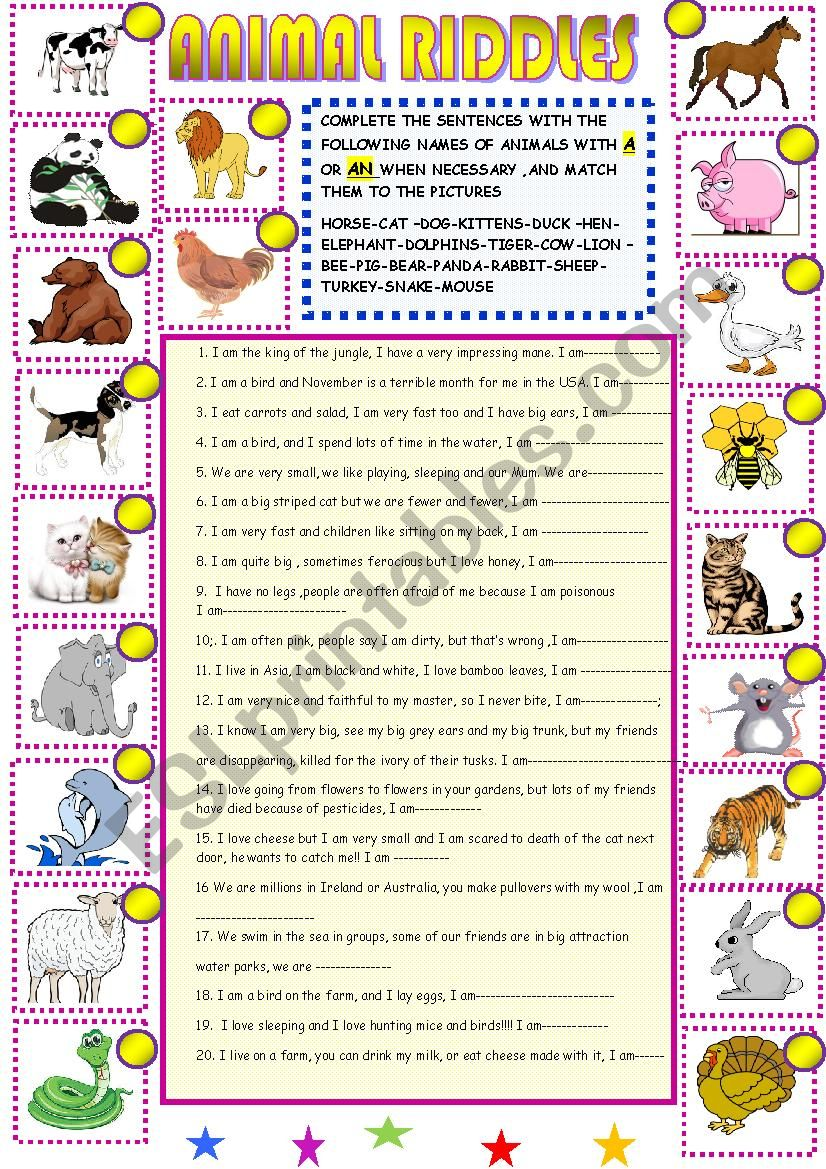 New animal riddles with key worksheet