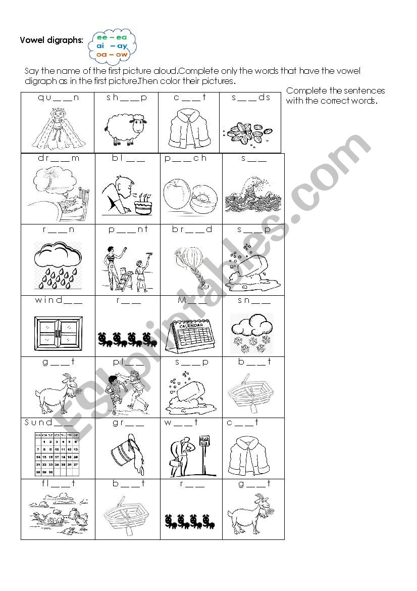 Vowel Digraphs Listening Exercise Ee Ea Ai Ay Oa Ow Esl Worksheet By Laurita02