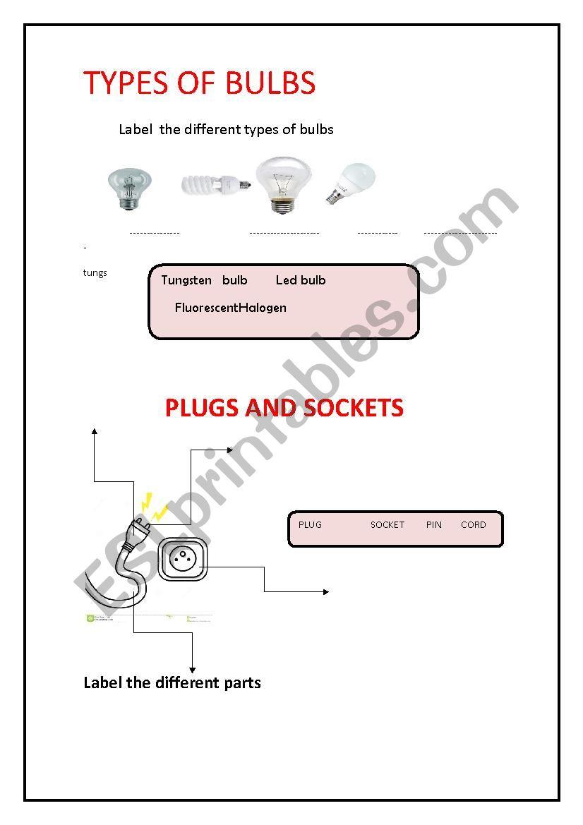 types of bulbs  worksheet