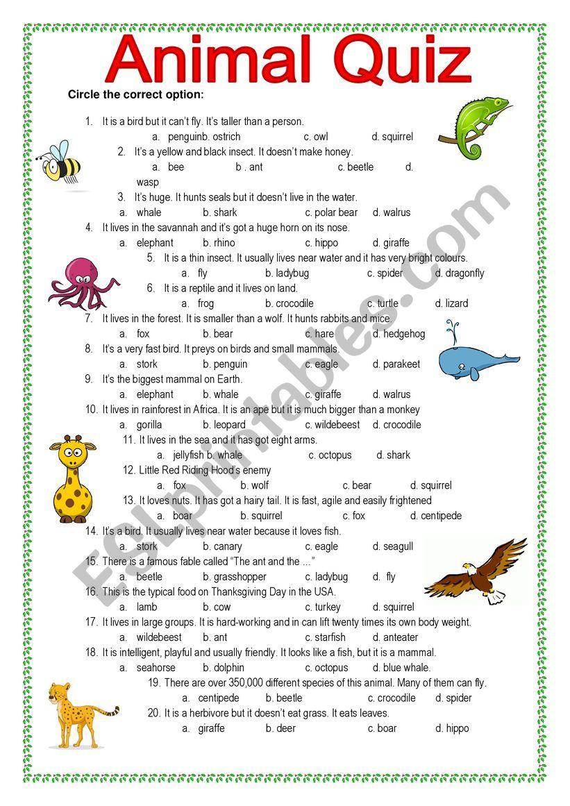 Animal Quiz worksheet