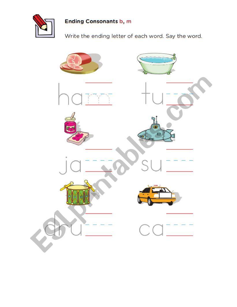 completa con b y m worksheet