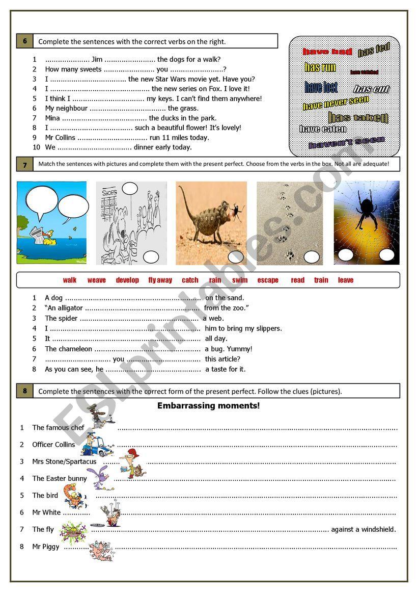 Present Perfect (part 2) worksheet