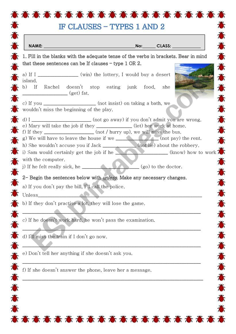If-clauses-Type 1 and 2 worksheet