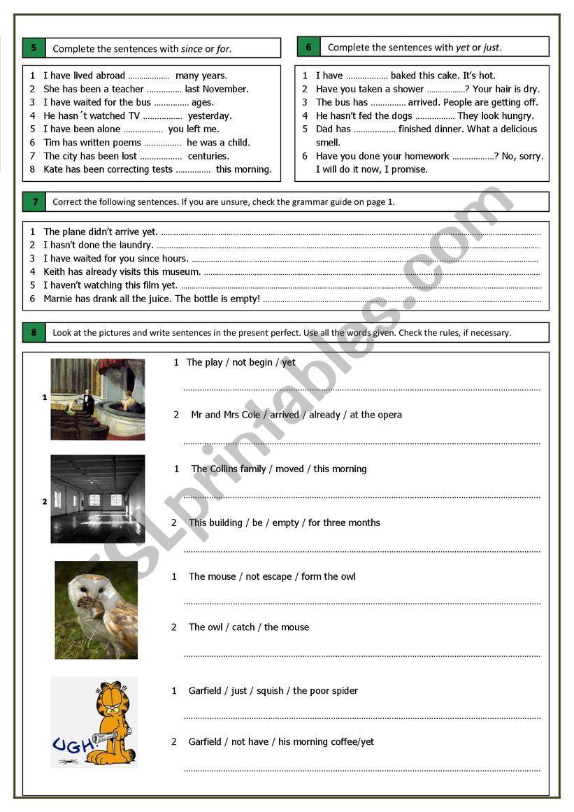Present Perfect (4) worksheet