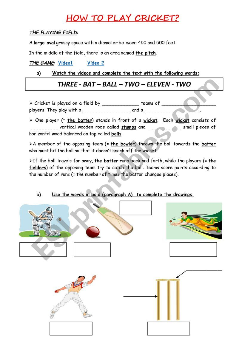 How To Play Cricket Esl Worksheet By Stefanystef