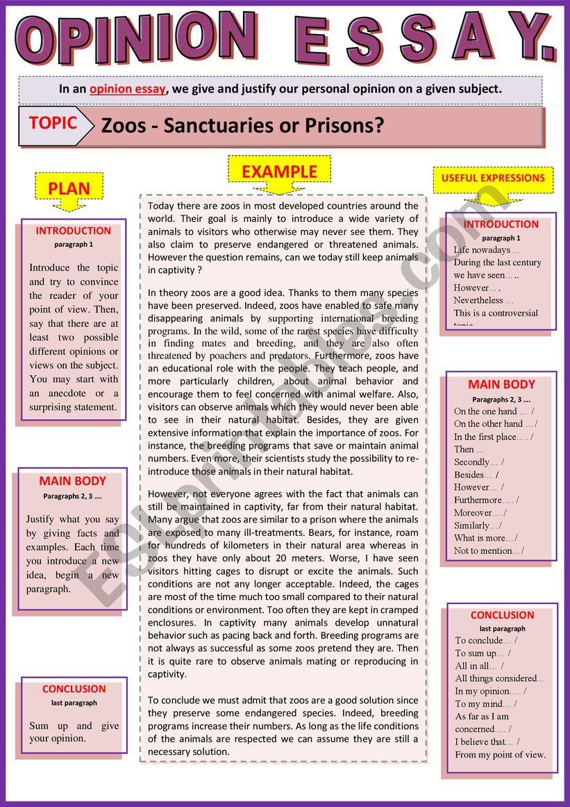 Argumentative essay on zoos prisons or sanctuaries