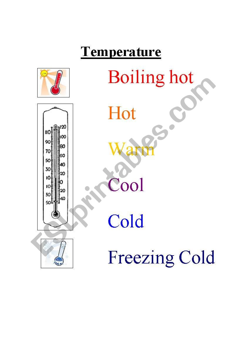 Temperature Vocabulary Sheet for Molecular Motion Lesson