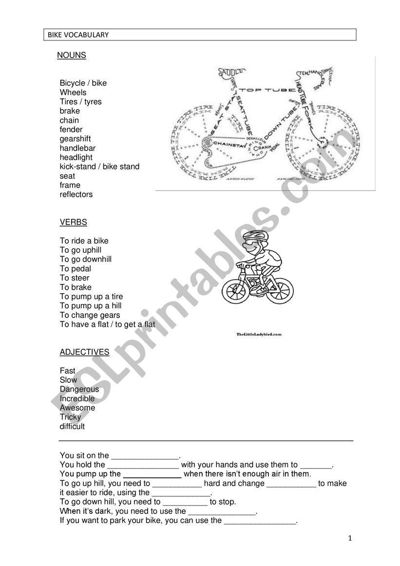 Bike vocabulary worksheet