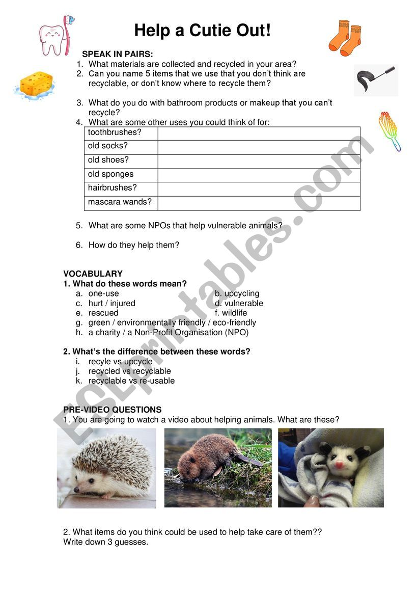 Help a Cutie Out! Environmentally Friendly Recycling to help Cute Animals - Video and Discussion