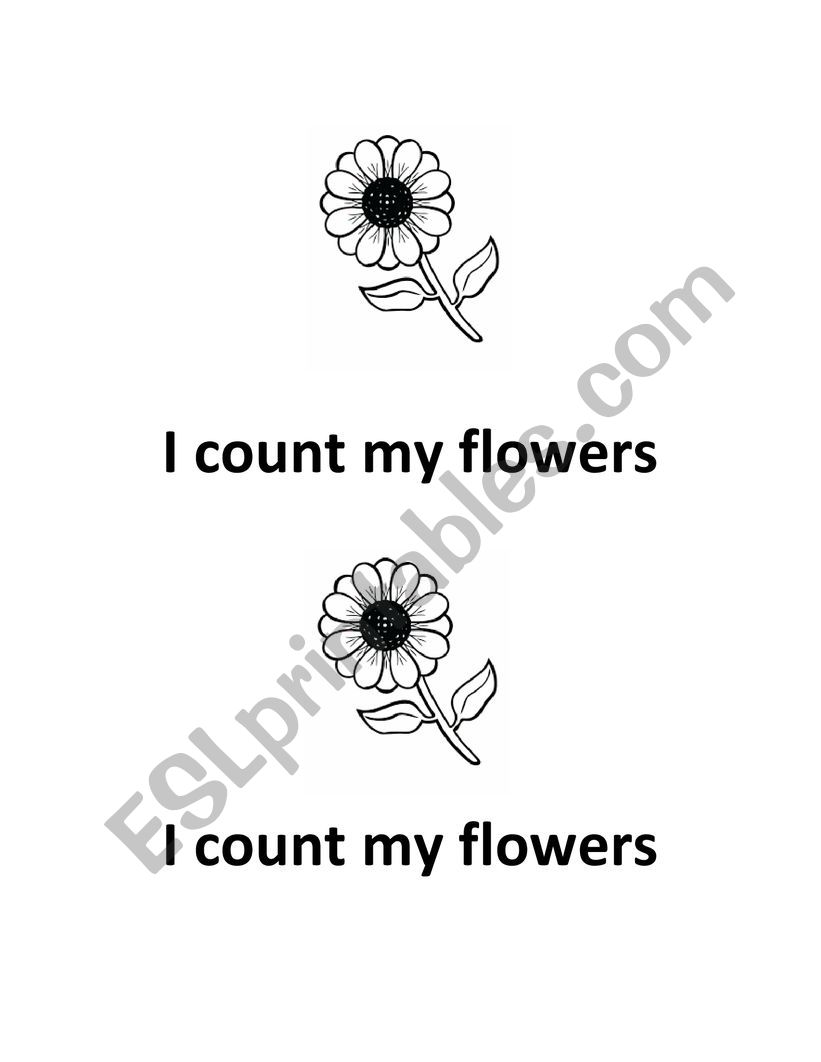 I count my flowers worksheet
