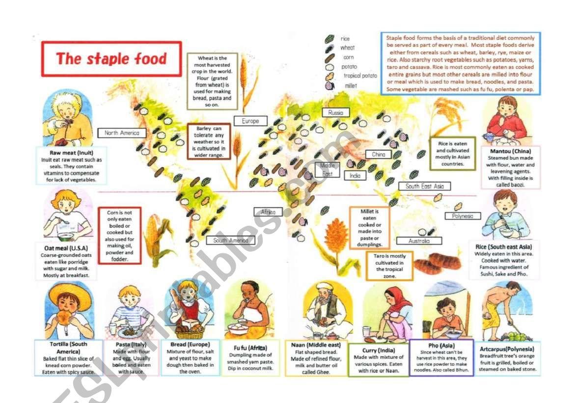 Staple food around the world worksheet