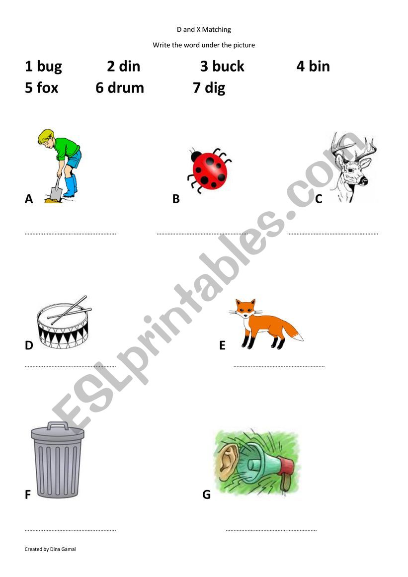 Letter D and X words worksheet