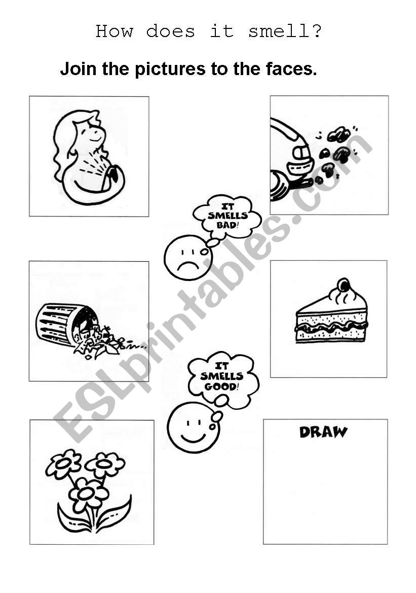 Smell Worksheet Kindergarten