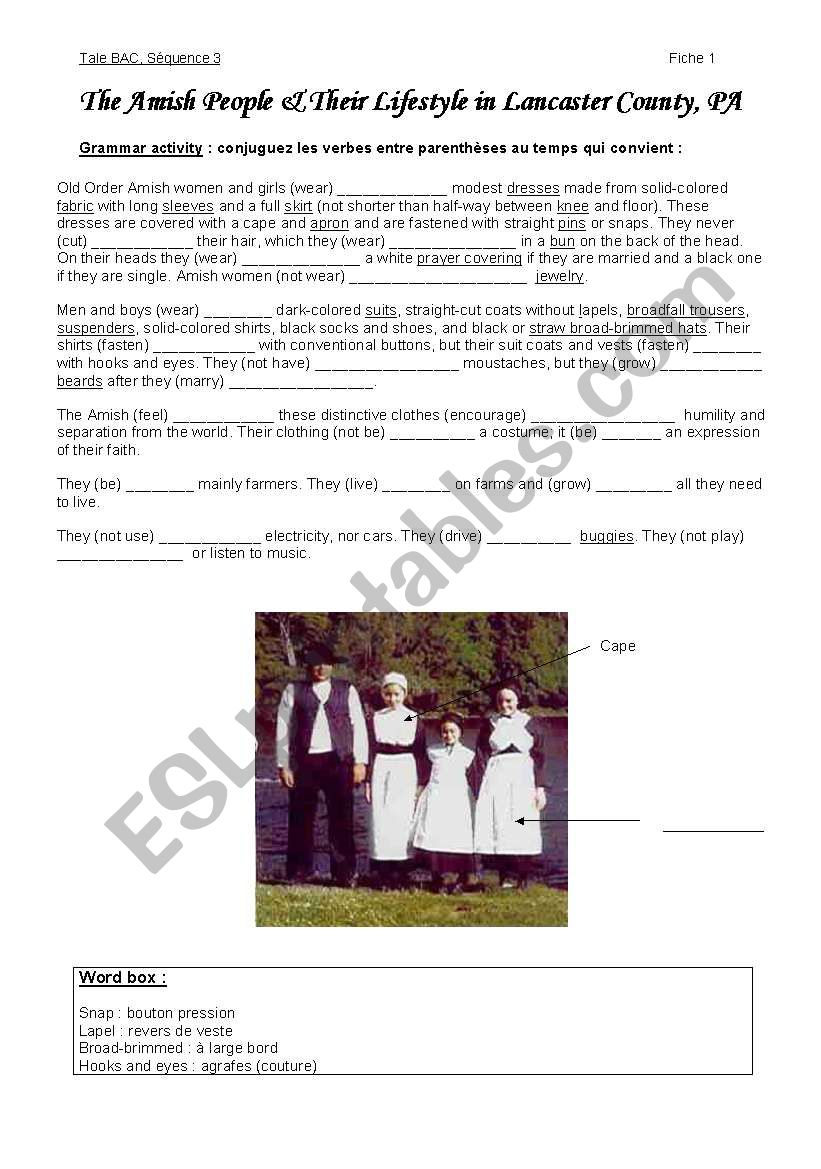 Amish people worksheet