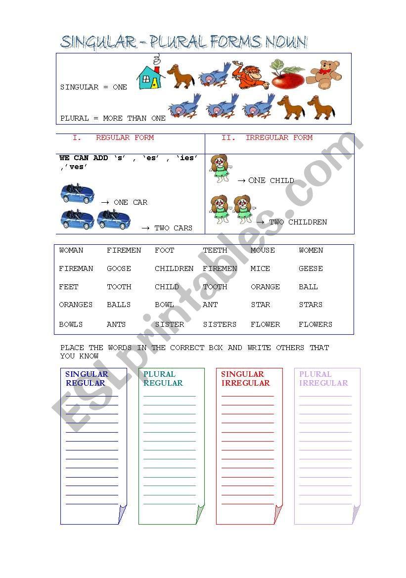 singular and plural nouns exercises pdf