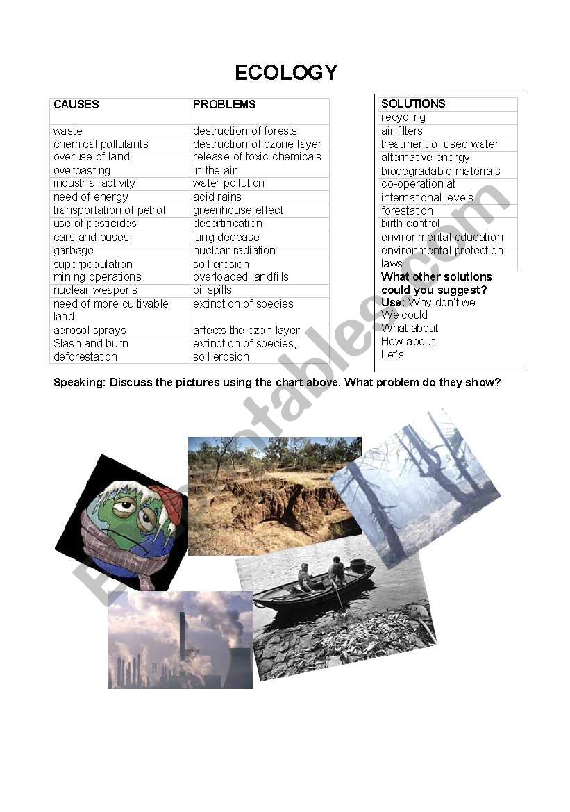 ECOLOGY worksheet
