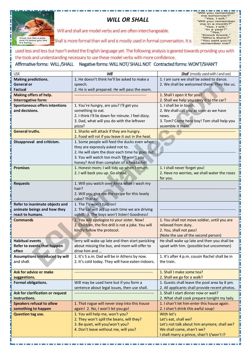 USES OF WILL AND SHALL worksheet