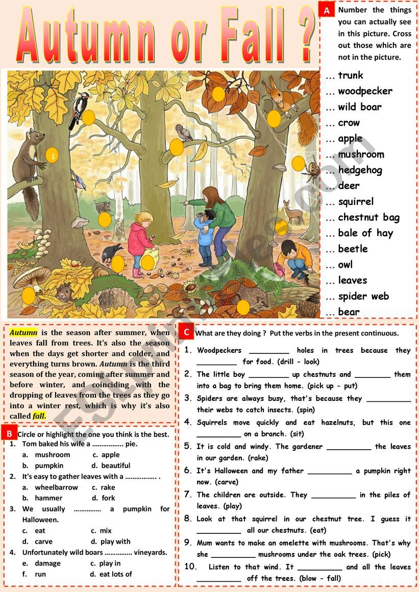 I love autumn/fall. Vocabulary + present continuous + KEY