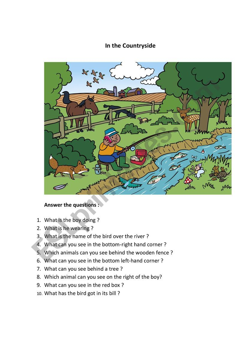 In the countryside worksheet