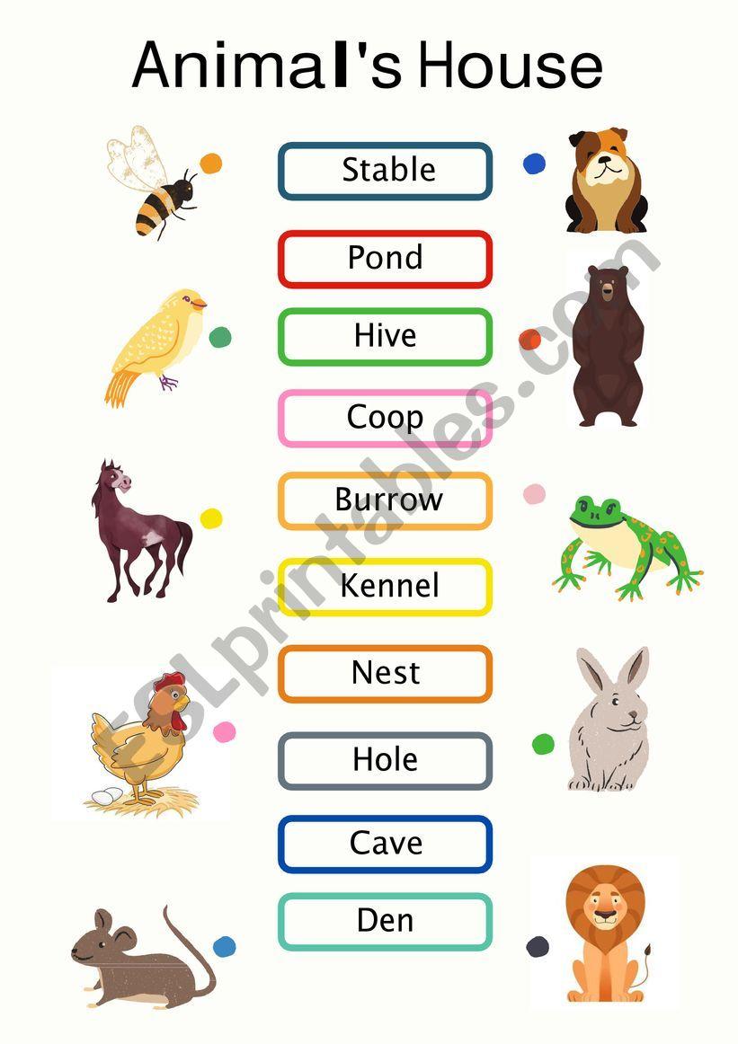House of Animals worksheet