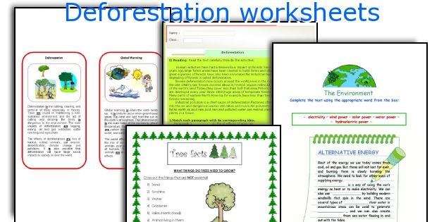 Deforestation: Why are trees important?1
