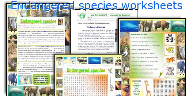Endangered species worksheets