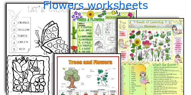 Flowers worksheets