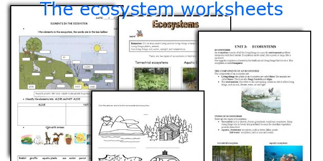 Printables Ecosystem Worksheets english teaching worksheets the ecosystem