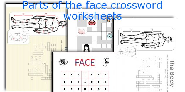 Parts of the face crossword worksheets