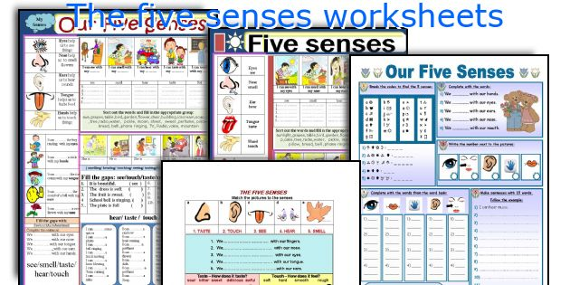 The five senses worksheets