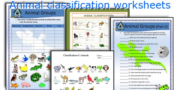 English teaching worksheets Animal classification – Classification Worksheets