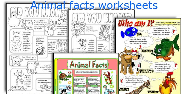 Animal facts worksheets