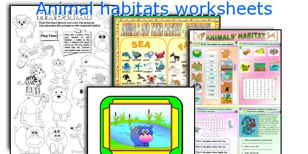 English teaching worksheets Animal habitats – Animal Habitat Worksheets for Kindergarten