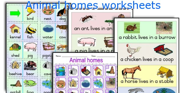 animal homes worksheets worksheets and activities for teaching animal ...