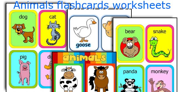 Animals flashcards worksheets