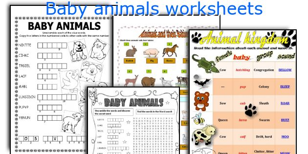 English teaching worksheets Baby animals – Animals and Their Babies Worksheets for Kindergarten