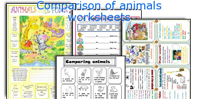 Comparison of animals worksheets