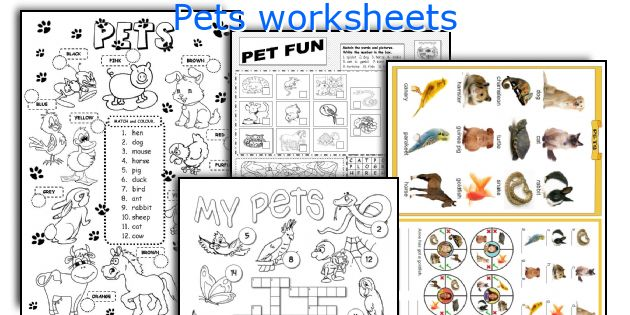 pets worksheets worksheets and activities for teaching pets to english