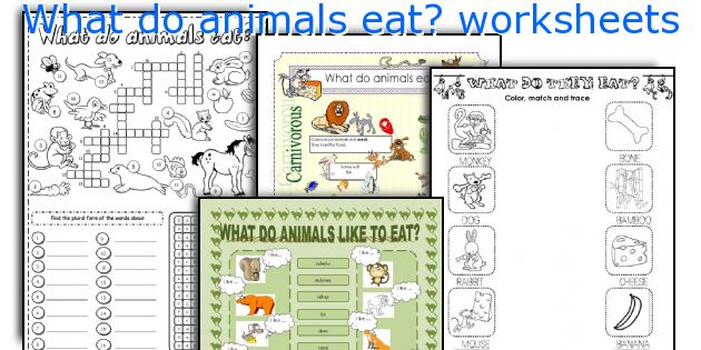 What do animals eat? worksheets